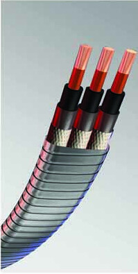 China API Electric Submersible Pump Cable/Motor Lead Extension (232°C(450°F) supplier