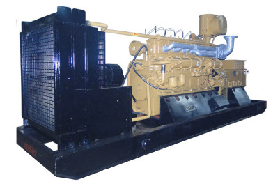 China 300kw Natural Gas Generator Set with Alternator Brand Stanford,Marathon, Engga and Simens distributor